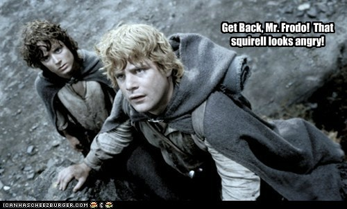 angry elijah wood Frodo Baggins get back Lord of The Ring Lord of the Rings overprotective sam gamgee scary sean astin squirrel - 6329680384