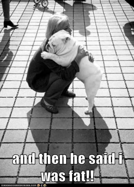 best of the week,bulldog,captions,dogs,fat,Hall of Fame,he said,hug,hugs,insulted,rejection,Sad