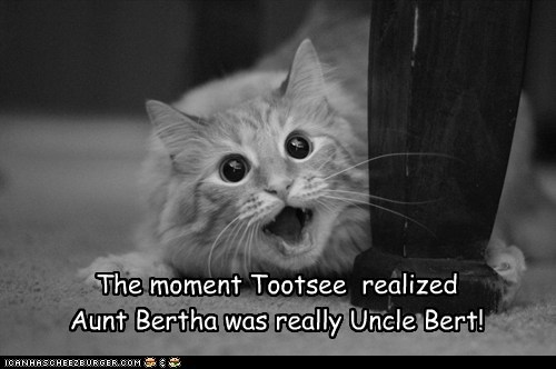The moment Tootsee  realized   Aunt Bertha was really Uncle Bert!