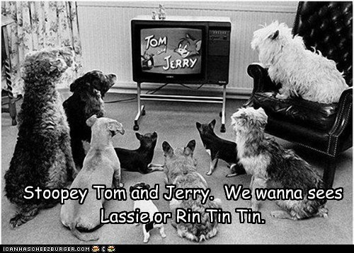 Stoopey Tom and Jerry. We wanna sees Lassie or Rin Tin Tin.