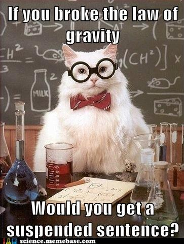 bad joke,chemistry cat,Gravity,science