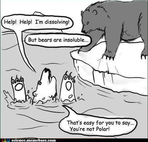 Chemistry,Memes,polar bear,pun,soluble