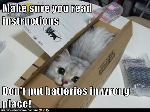 batteries build butt captions Cats instructions lolcats ouch ow put together read - 6330673920