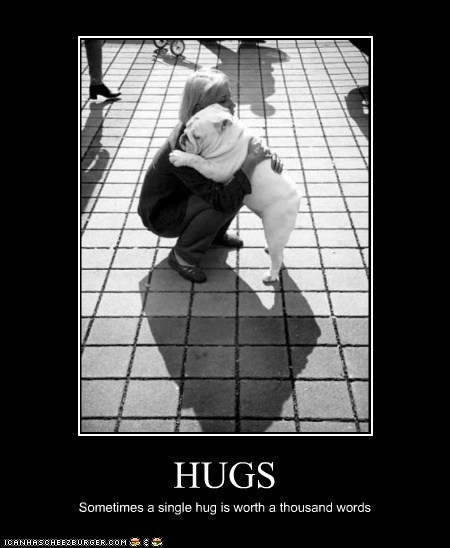 best of the week demotivational dogs english bulldog Hall of Fame hug - 6330803200