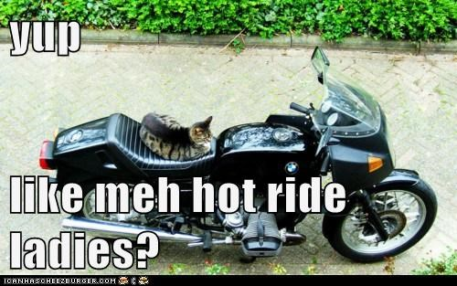 yup  like meh hot ride ladies?
