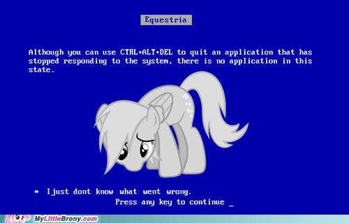derpy hooves I just don't know what we i-just-dont-know-what-went-wrong the internets windows - 6331403264