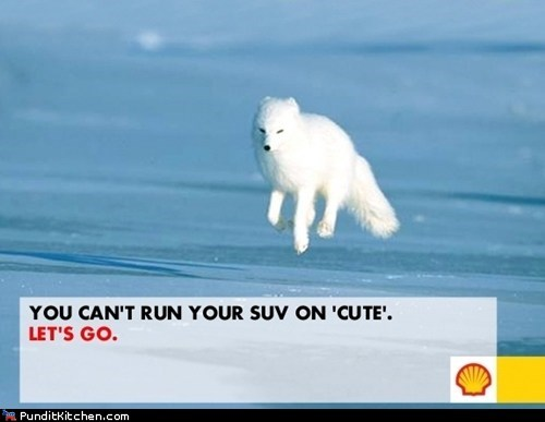 arctic drilling oil companies political pictures shell
