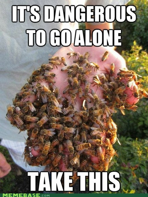 bees dangerous to go alone Memes take this the best zelda - 6332038656