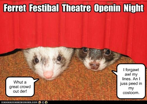 Ferret Festibal Theatre Openin Night Whut a great crowd out der! I forgawt awl my lines. An I juss peed in my costoom.