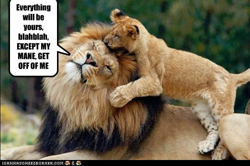 Everything will be yours, blahblah, EXCEPT MY MANE, GET OFF OF ME