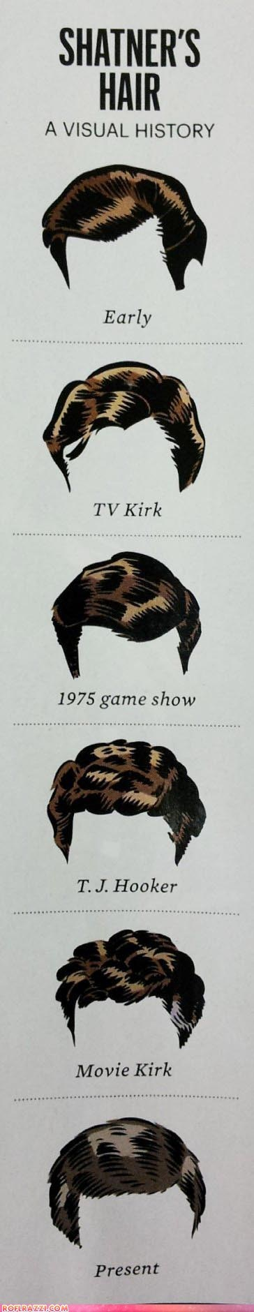 actor art celeb funny infographic William Shatner - 6332896512