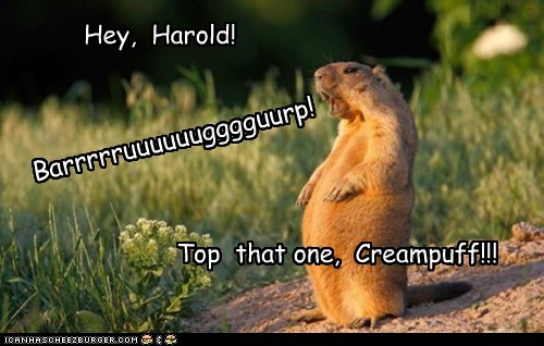 burp competition contest gopher harold loud top that - 6333250048