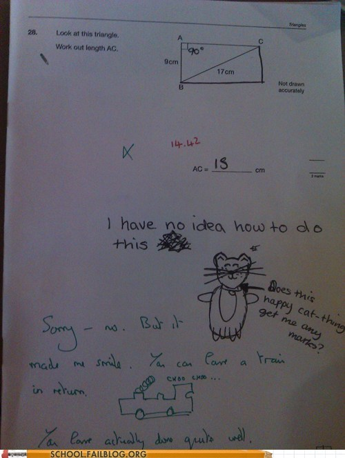 happy cat,math test,no idea,test humor,train
