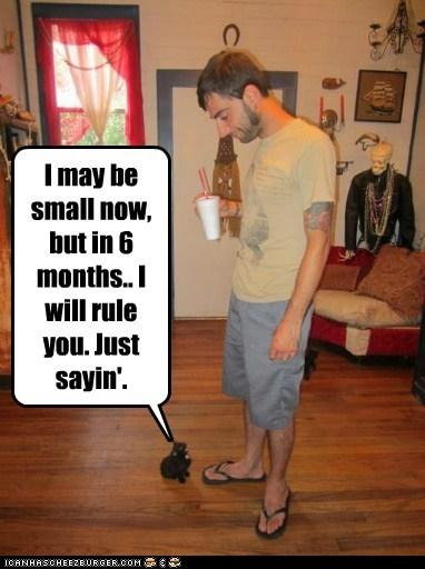 Cheezburger Image 6333330944