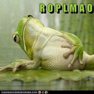 captions,frog,frogs,laughing,lily pad,pad,pond,rofl,roflmao,swamp