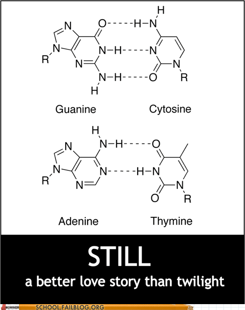 adenine,better love story than tw,better love story than twilight,Chemistry,cytosine,guanine,thymine
