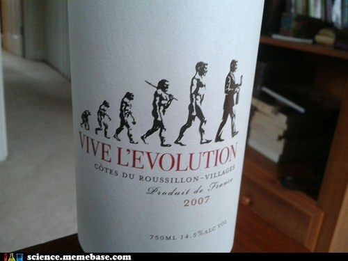 booze science evolution Life Sciences revolution wine - 6334592512