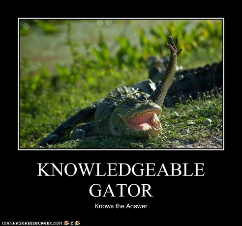 KNOWLEDGEABLE GATOR Knows the Answer