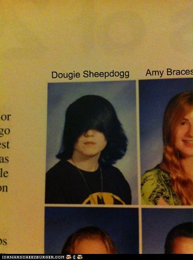 Dougie Sheepdogg Amy Braces