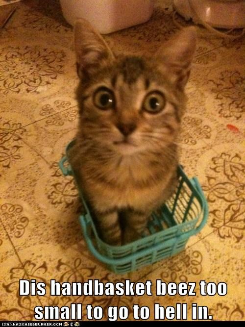 handbasket,hell,if it fits,literal,phrase,saying,sit,small