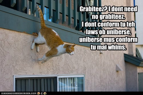 captions,Cats,climb,climbing,Gravity,laws of nature,lolcats,master,physics,walls,whim