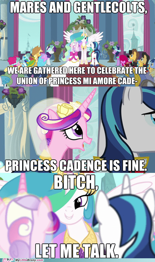 best of week,cadence,celestia,comic,comics,mi amore