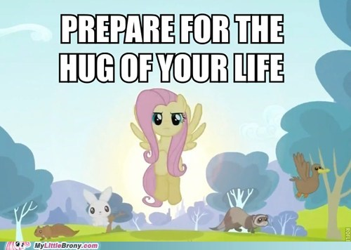 cute fluttershy gimme gimme gimme hug the internets