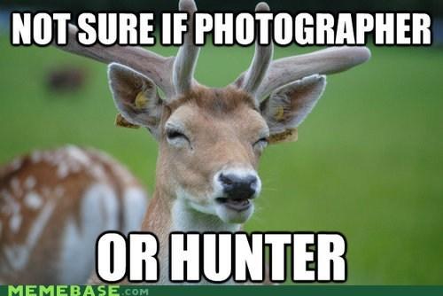 animals deer fry hunter photographer - 6335316736