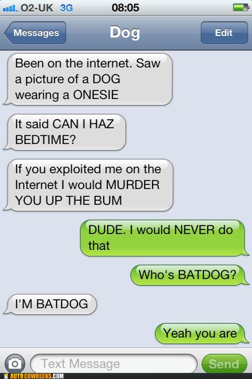 batdog exploiting animals i can haz bedtime texts from dog - 6335384320