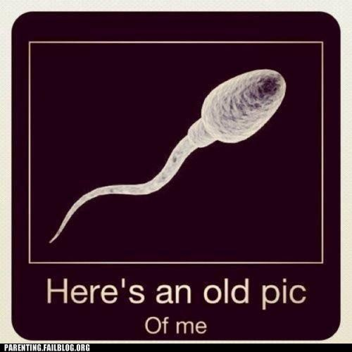 conception,old pic of me,pregnancy,semen,sex ed