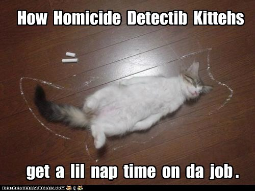 How Homicide Detectib Kittehs get a lil nap time on da job .