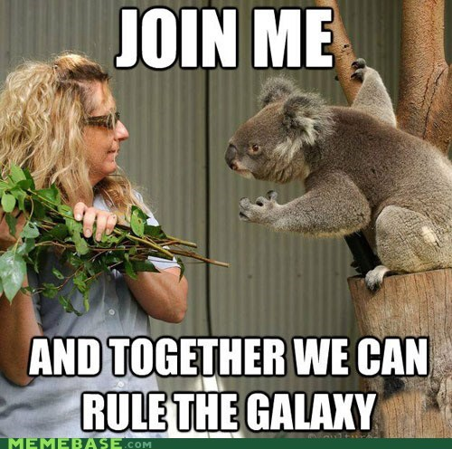 darth vader galaxy koala Memes star wars - 6335650048