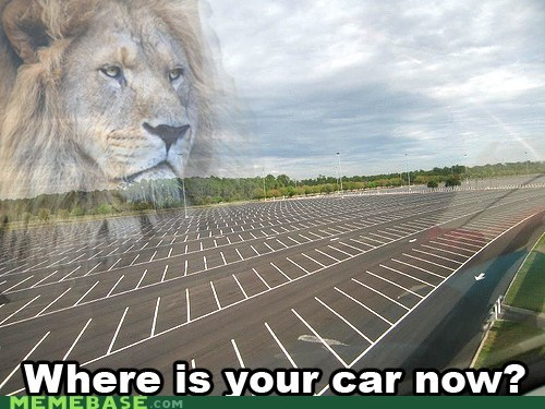 car,lion,Memes,parking lot