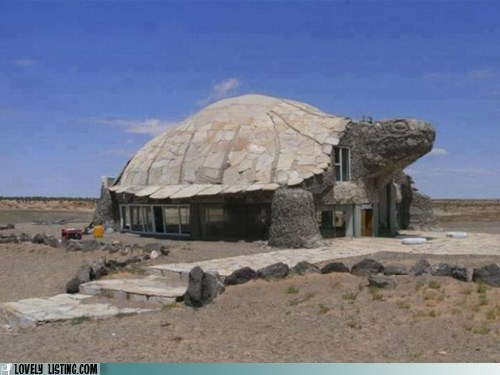 desert dome house slow turtle