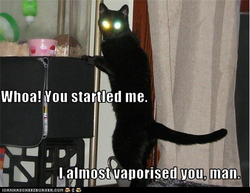 basement cat,classic,classics,laser,stare,vaporize