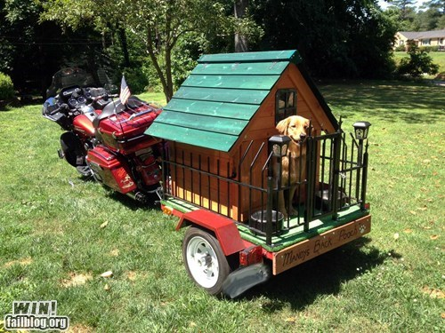 bike dogs driving motorcycle pets trailers - 6336226816