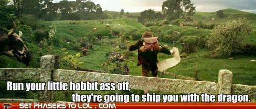 bennedict cumberbatch Bilbo Baggins dragon fanfiction fangirls hobbit Martin Freeman ship The Hobbit - 6336300544