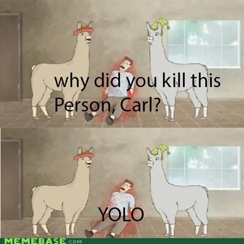 charlie the unicorn llama Memes yolo - 6336408064