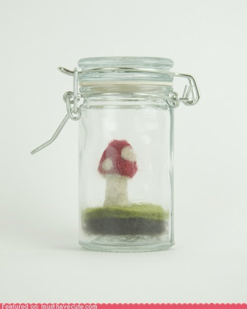 felted jar miniature mushroom tiny - 6337337344