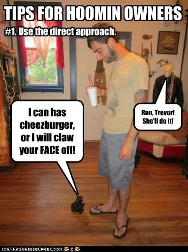 Cheezburger Image 6337683456