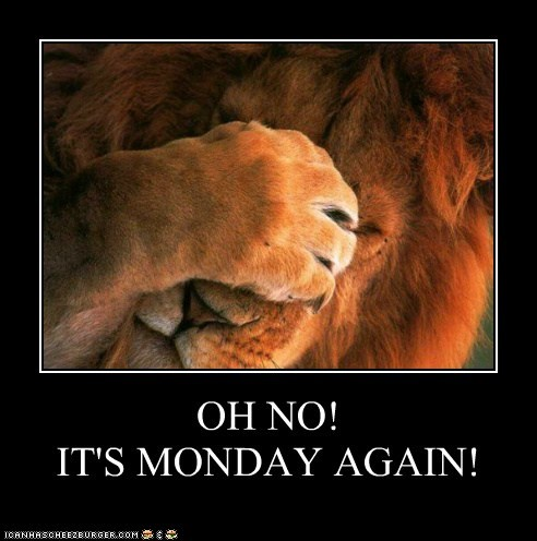 OH NO! IT'S MONDAY AGAIN!