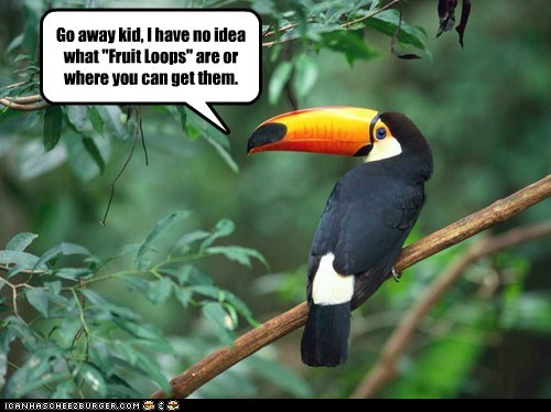 cereal,confused,go away,kids,mascot,no idea,toucan,toucan sam