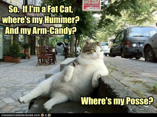 So. If I'm a Fat Cat, where's my Hummer? And my Arm-Candy? Where's my Posse?