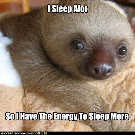 I Sleep Alot So I Have The Energy To Sleep More