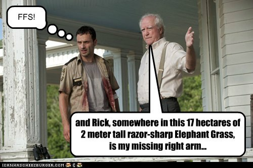 and Rick, somewhere in this 17 hectares of 2 meter tall razor-sharp Elephant Grass, is my missing right arm... FFS!