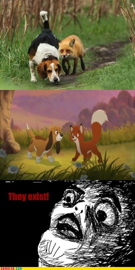cartoons,Fox and the Hound,From the Movies,IRL