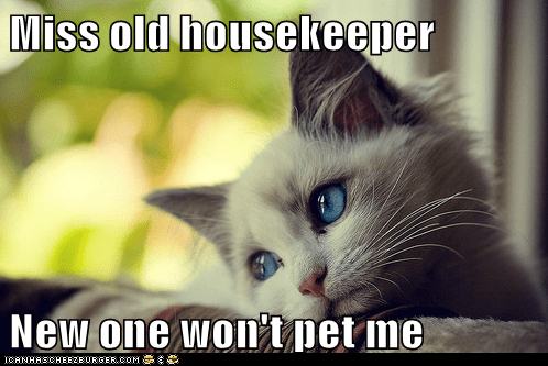Miss old housekeeper New one won't pet me