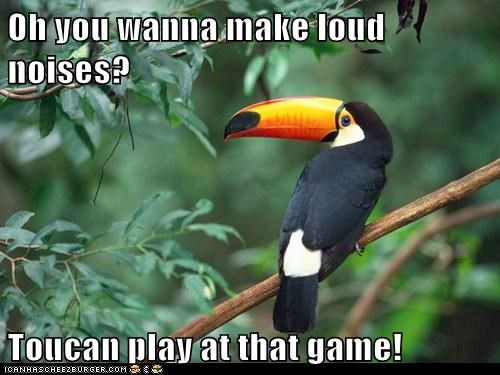 Oh you wanna make loud noises? Toucan play at that game!