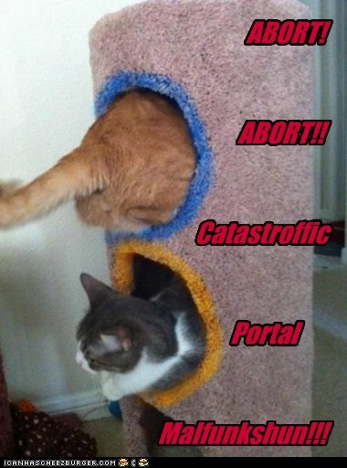 broken cat tree FAIL malfunction Portal teleportation - 6339628544