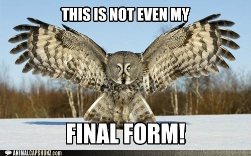 big evolved forms final form Owl scary spread wings wingspan